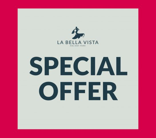 BV Special Offer Social Graphic